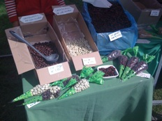 pure markt amsterdam - chocolate cranberries