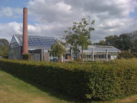 Restaurant de Kas Amsterdam - Chimney, Greenhouse and Garden